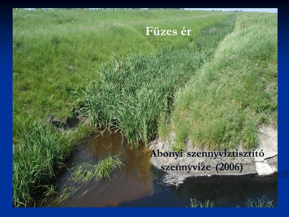 Füzes ér Abonyi szennyvíztisztító szennyvize (2006)