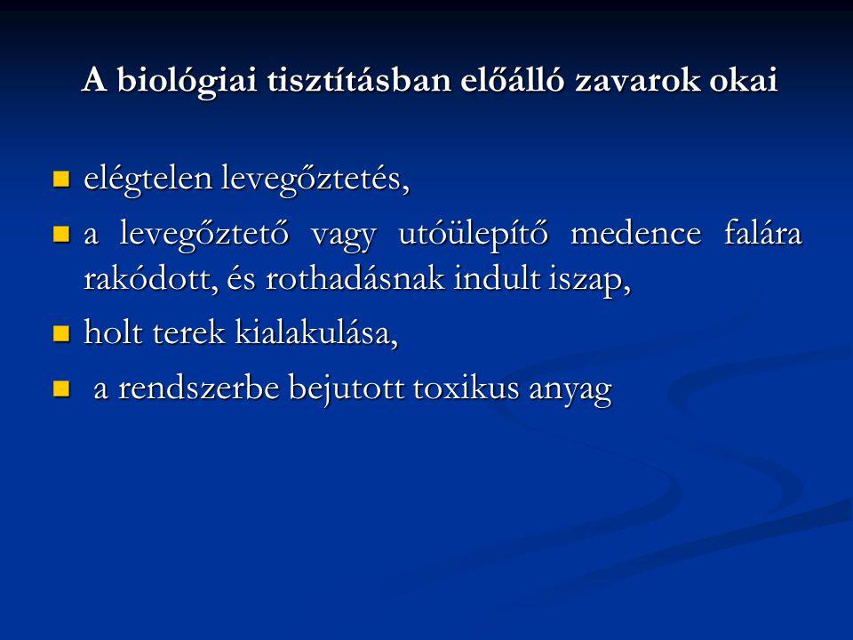 A biológiai tisztításban előálló zavarok okai