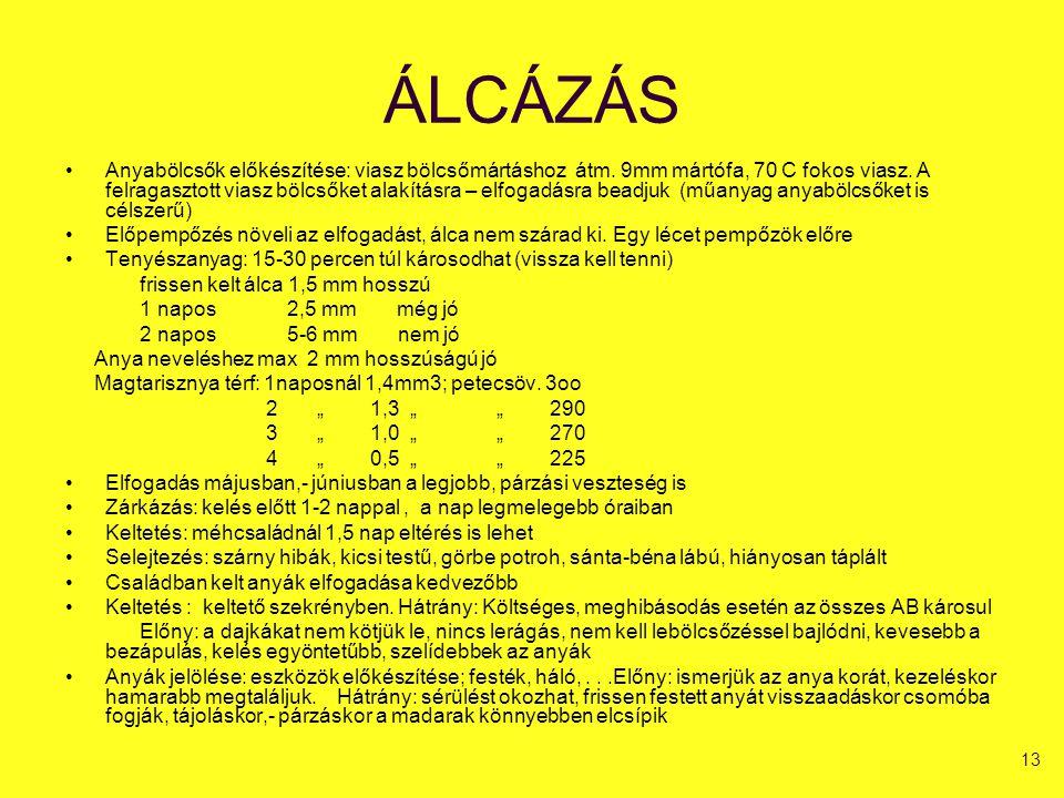 ÁLCÁZÁS