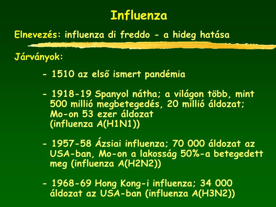 Influenza Elnevezés: influenza di freddo - a hideg hatása Járványok: