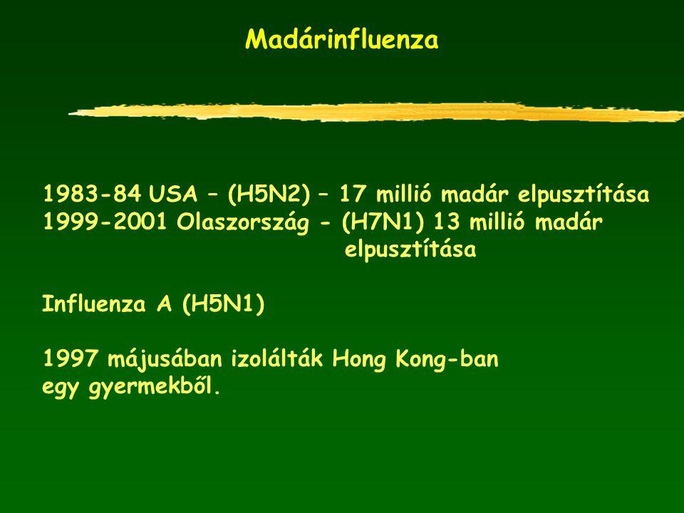 Madárinfluenza 1983-84 USA – (H5N2) – 17 millió madár elpusztítása