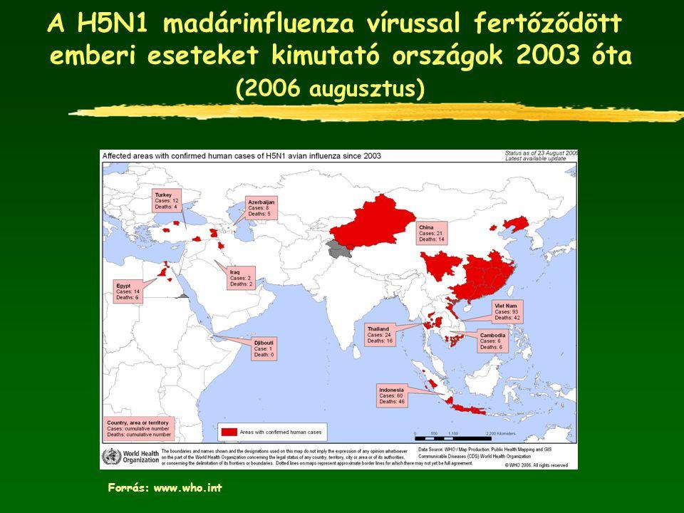 A H5N1 madárinfluenza vírussal fertőződött