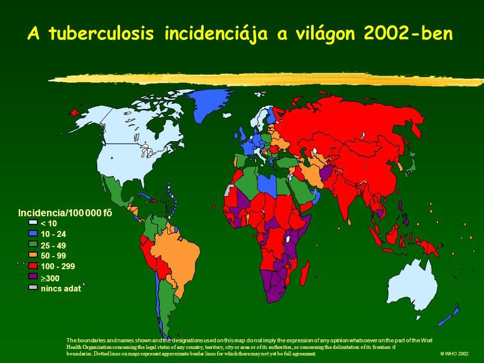 A tuberculosis incidenciája a világon 2002-ben
