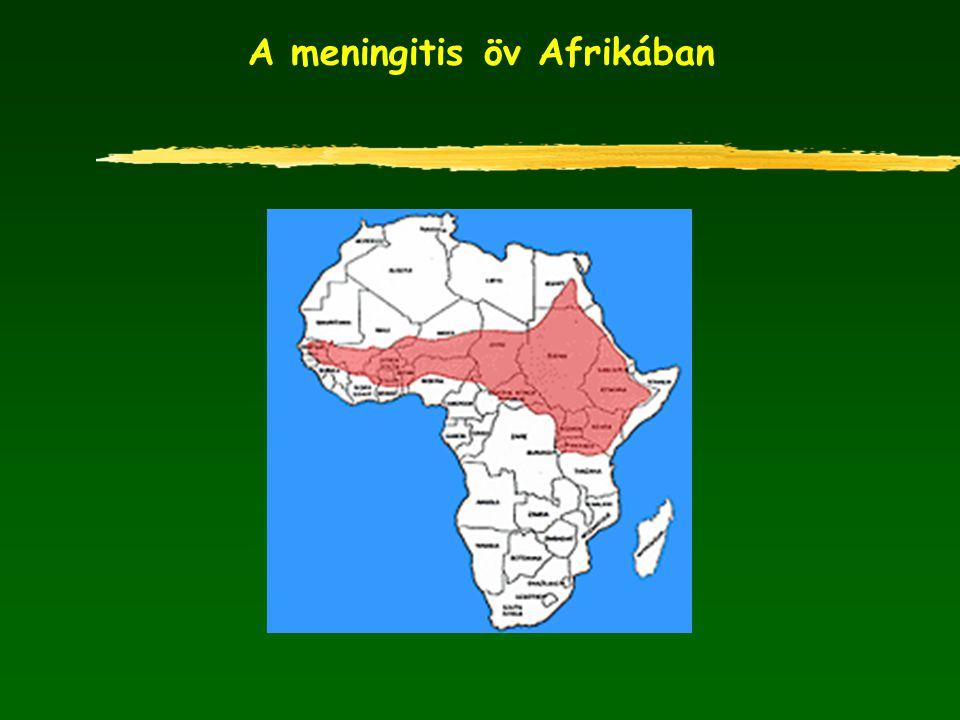 A meningitis öv Afrikában