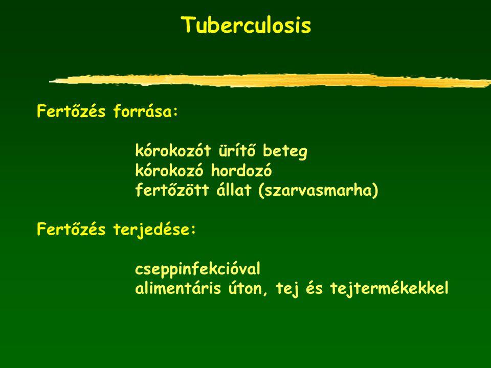Tuberculosis Fertőzés forrása: kórokozót ürítő beteg kórokozó hordozó