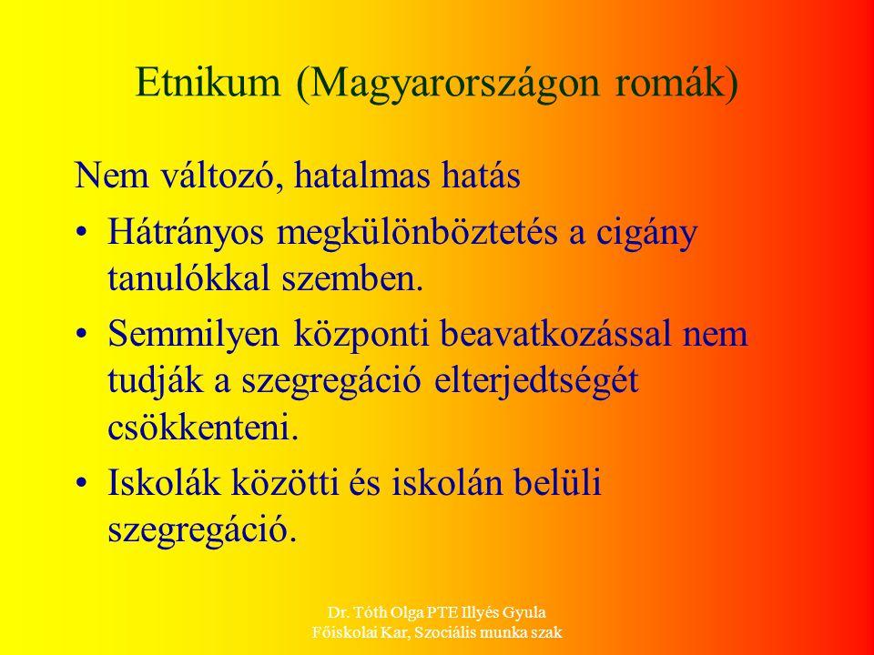 Etnikum (Magyarországon romák)