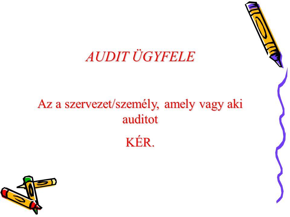 Az a szervezet/személy, amely vagy aki auditot