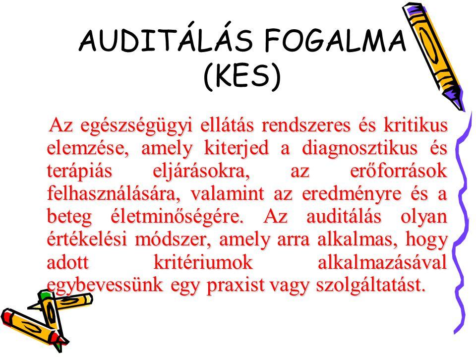 AUDITÁLÁS FOGALMA (KES)