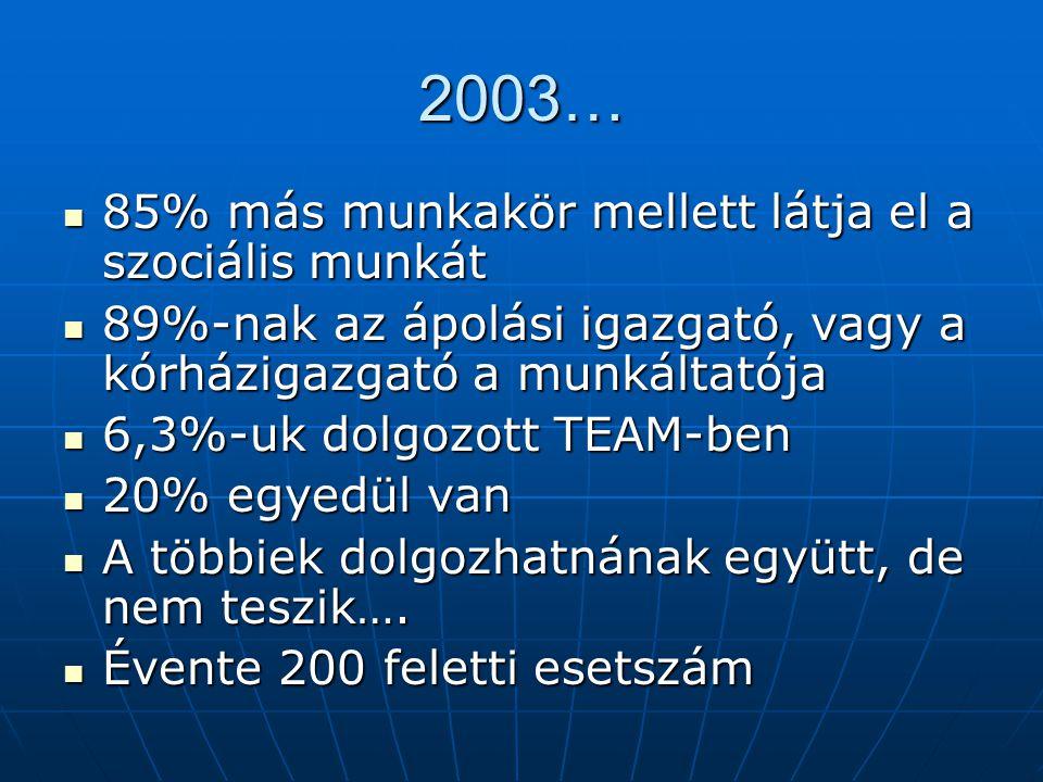 2003… 85% más munkakör mellett látja el a szociális munkát