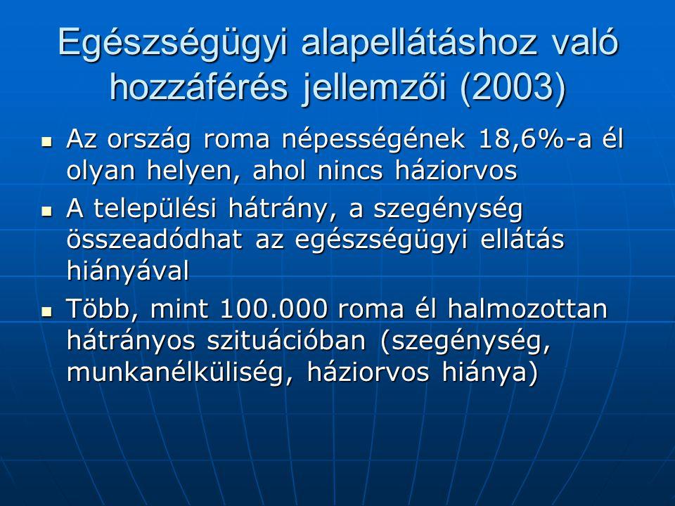 Egészségügyi alapellátáshoz való hozzáférés jellemzői (2003)