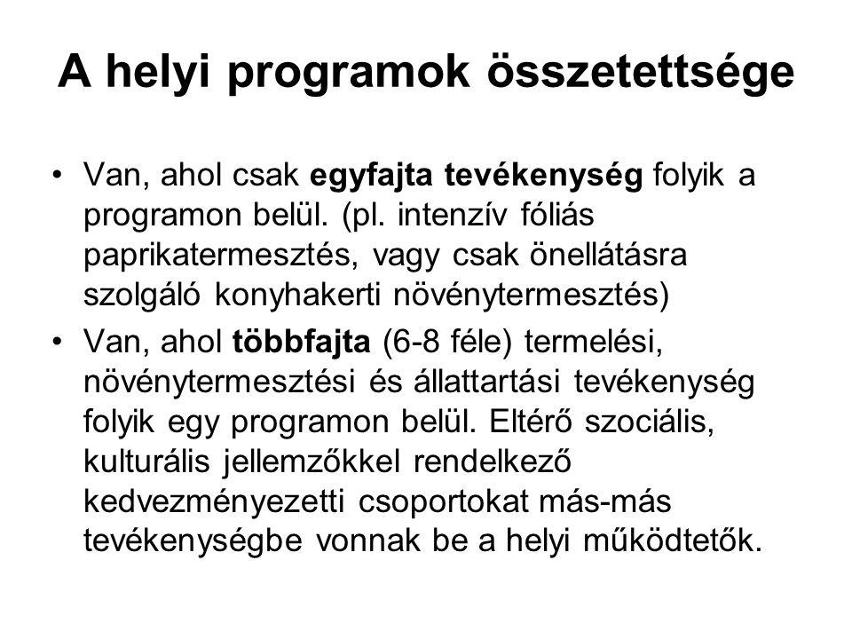A helyi programok összetettsége