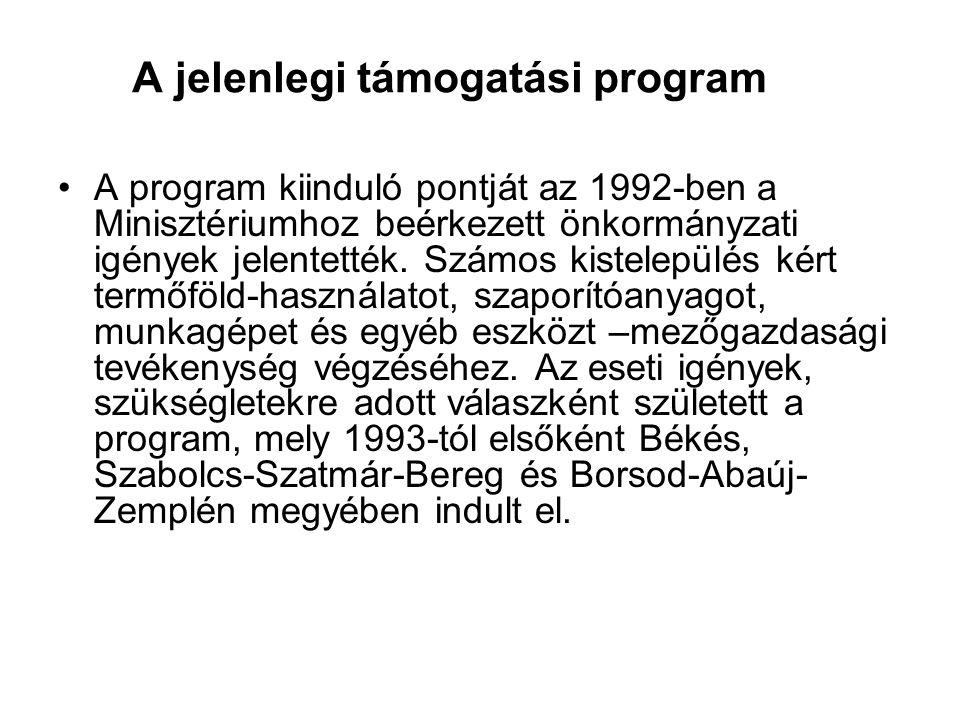 A jelenlegi támogatási program