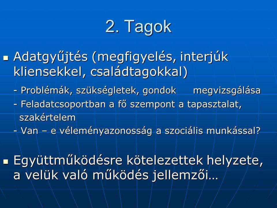 2. Tagok Adatgyűjtés (megfigyelés, interjúk kliensekkel, családtagokkal) - Problémák, szükségletek, gondok megvizsgálása.