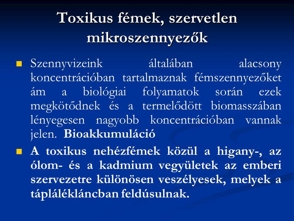 Toxikus fémek, szervetlen mikroszennyezők