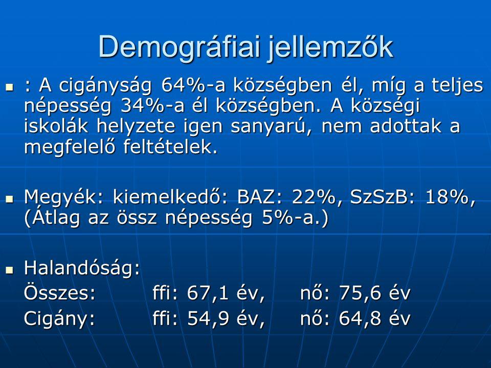 Demográfiai jellemzők