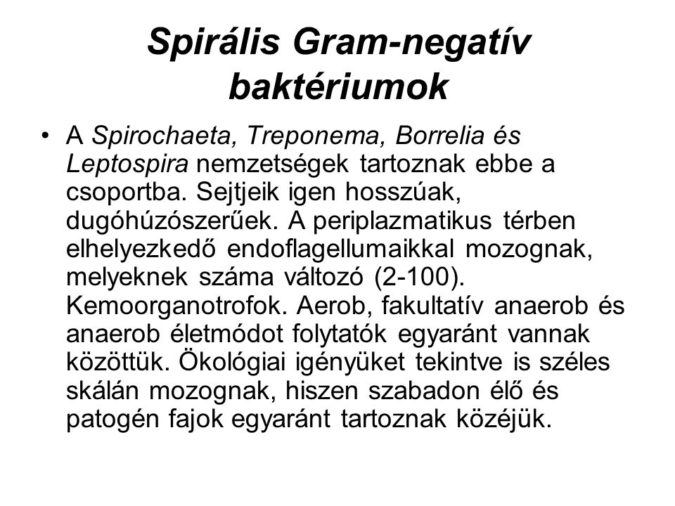 Spirális Gram-negatív baktériumok