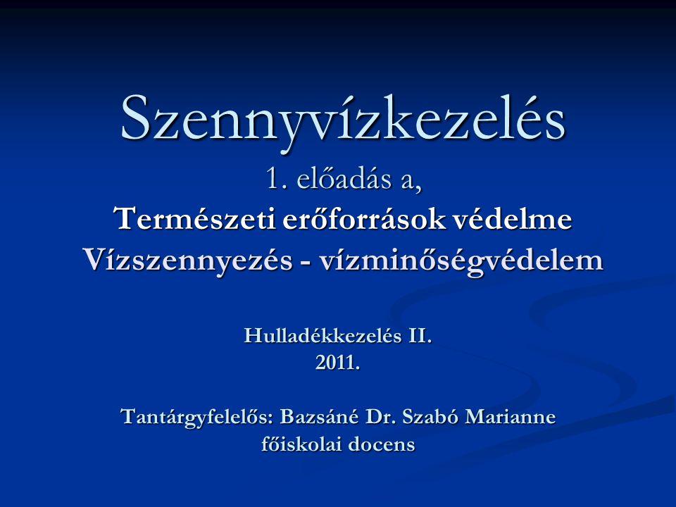 Tantárgyfelelős: Bazsáné Dr. Szabó Marianne