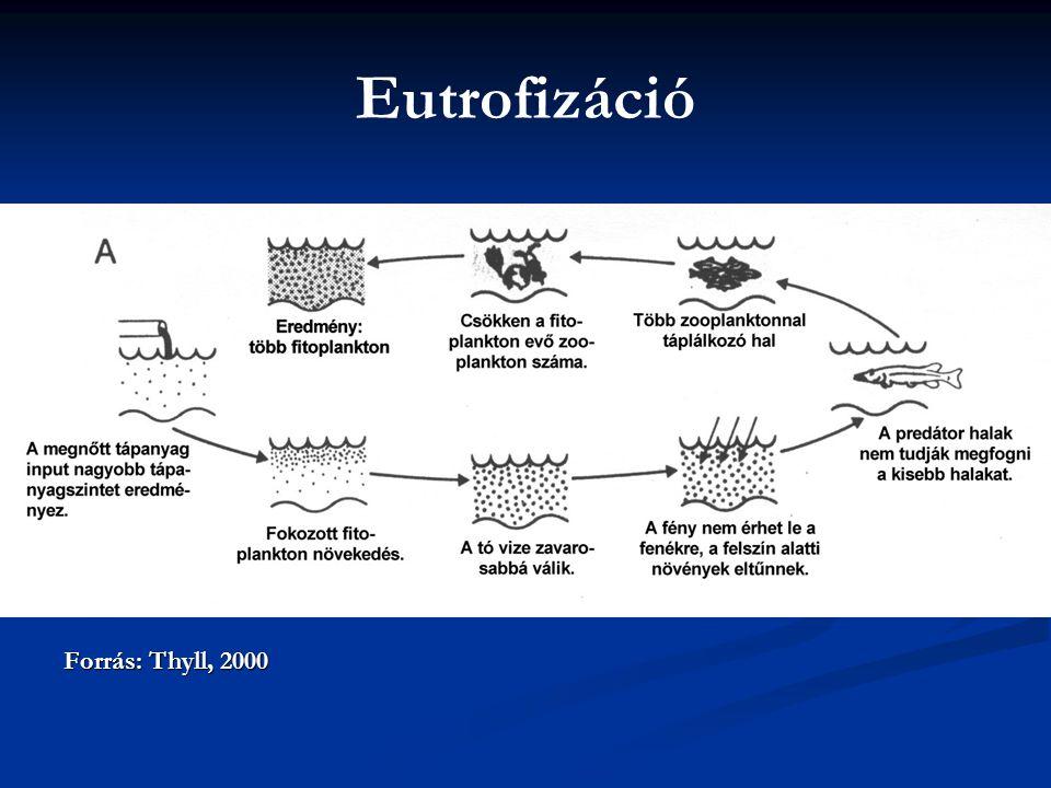 Eutrofizáció Forrás: Thyll, 2000