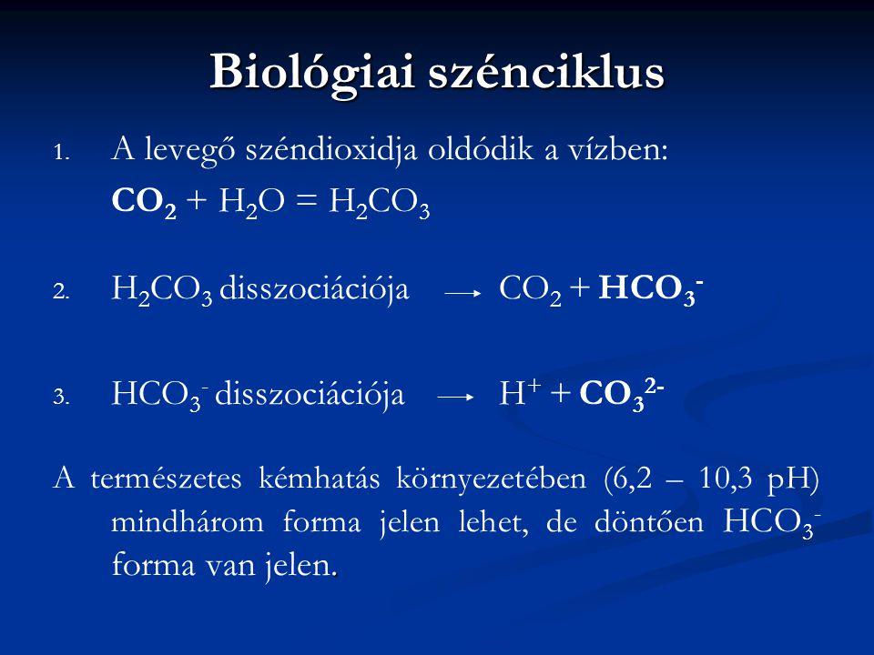 Biológiai szénciklus A levegő széndioxidja oldódik a vízben: