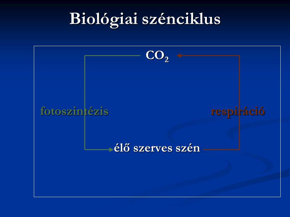 Biológiai szénciklus CO2 fotoszintézis respiráció élő szerves szén