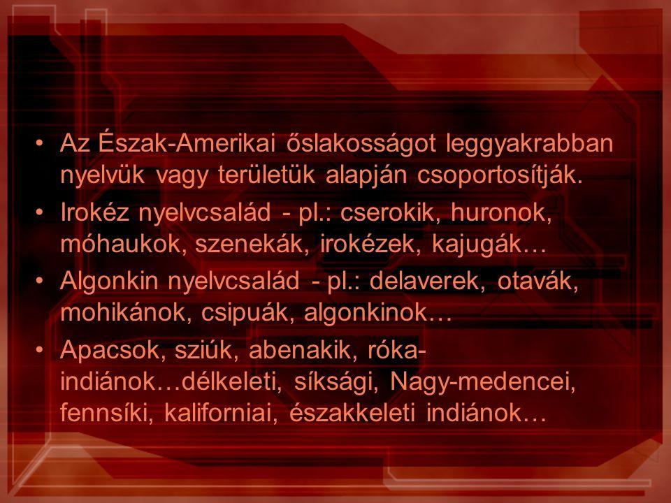 Az Észak-Amerikai őslakosságot leggyakrabban nyelvük vagy területük alapján csoportosítják.
