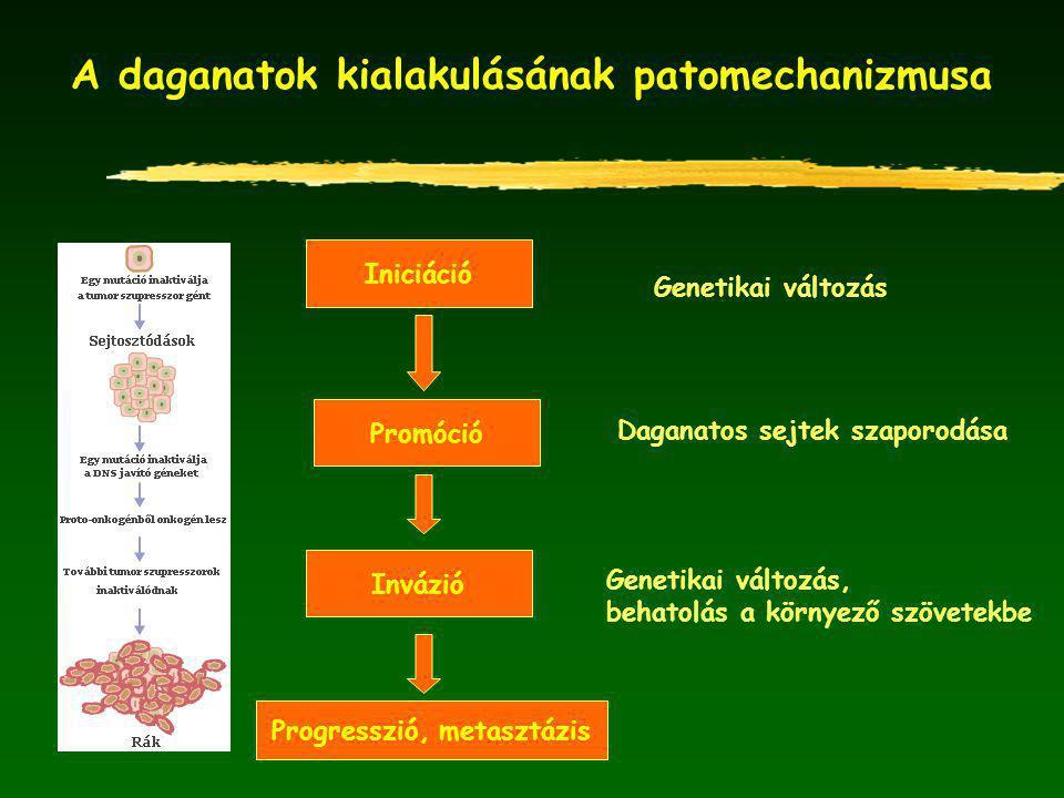 A daganatok kialakulásának patomechanizmusa
