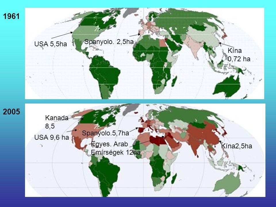 1961 2005 Spanyolo. 2,5ha USA 5,5ha Kína 0,72 ha Kanada 8,5