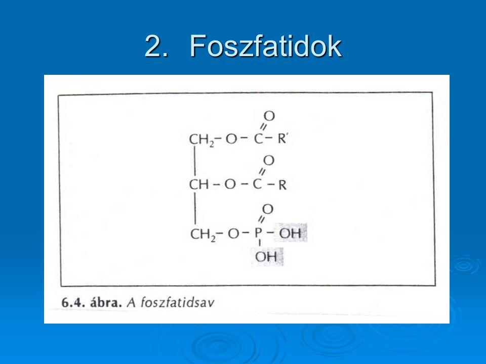 Foszfatidok