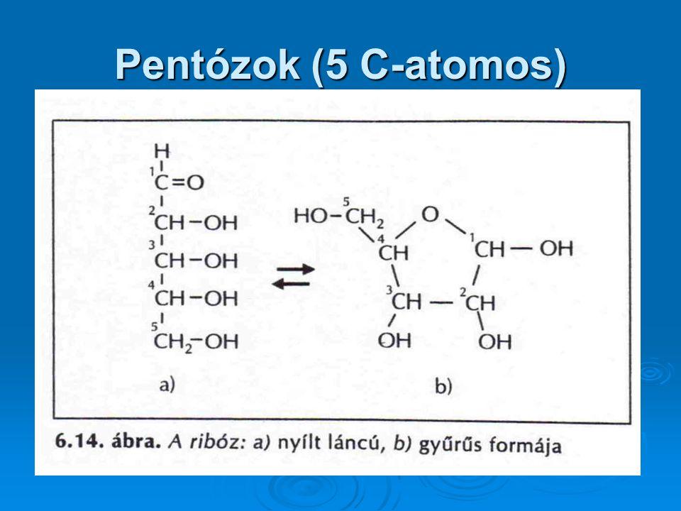 Pentózok (5 C-atomos)