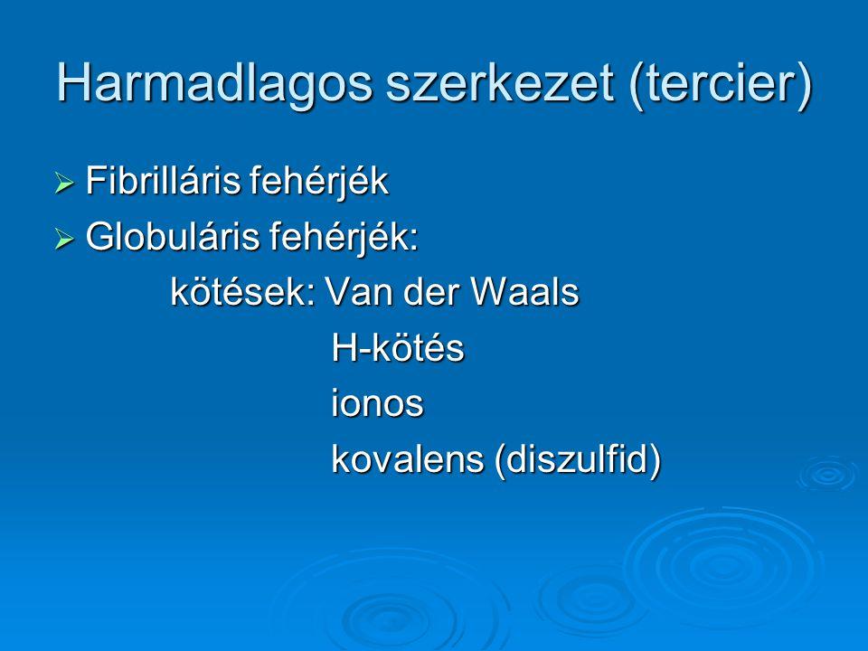 Harmadlagos szerkezet (tercier)
