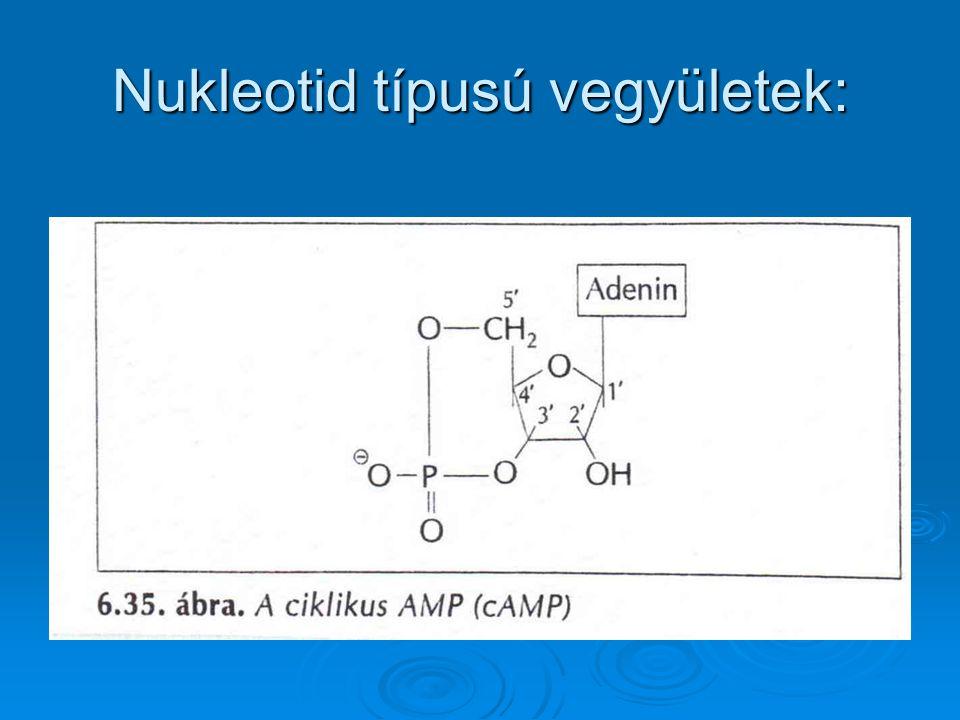 Nukleotid típusú vegyületek: