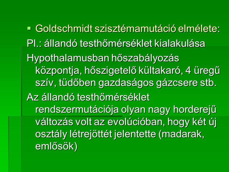Goldschmidt szisztémamutáció elmélete: