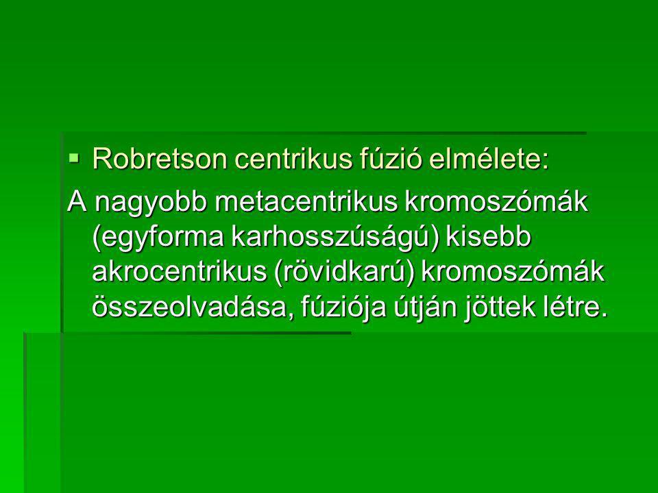Robretson centrikus fúzió elmélete: