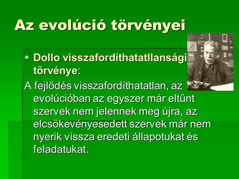 Az evolúció törvényei Dollo visszafordíthatatllansági törvénye: