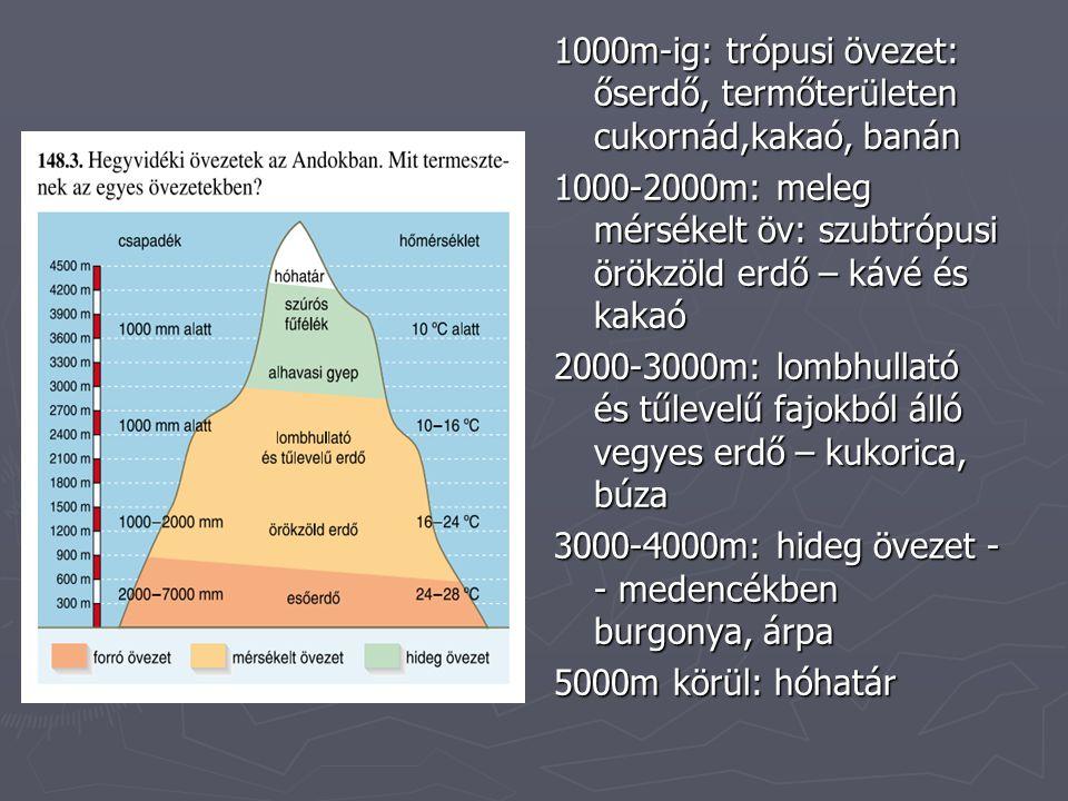 1000m-ig: trópusi övezet: őserdő, termőterületen cukornád,kakaó, banán