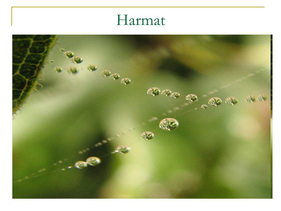 Harmat