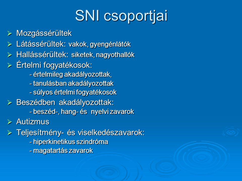 SNI csoportjai Mozgássérültek Látássérültek: vakok, gyengénlátók