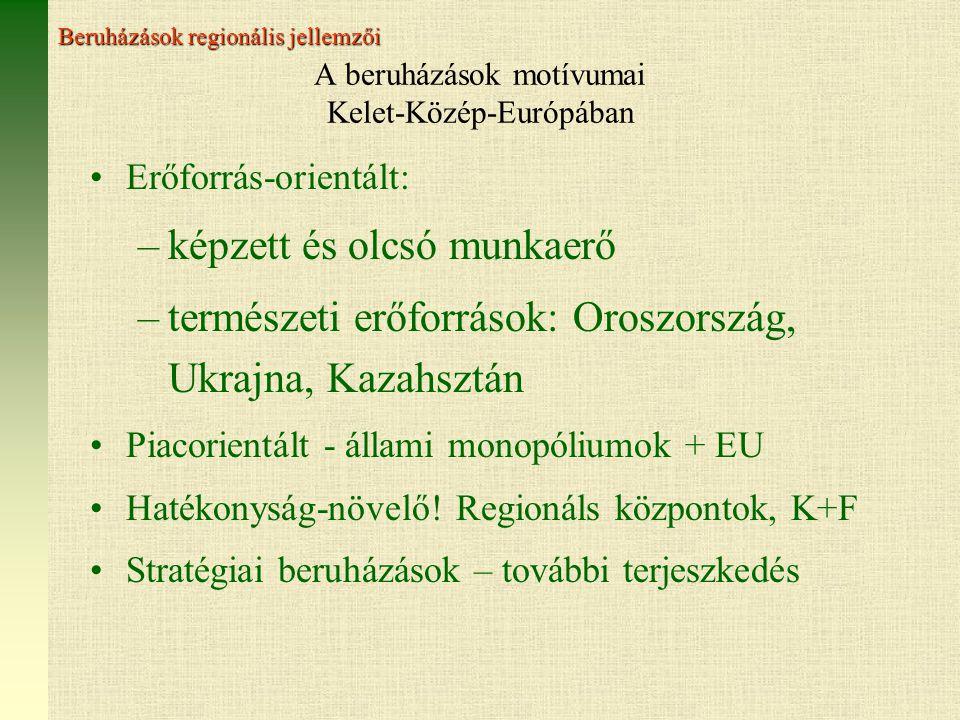 A beruházások motívumai Kelet-Közép-Európában