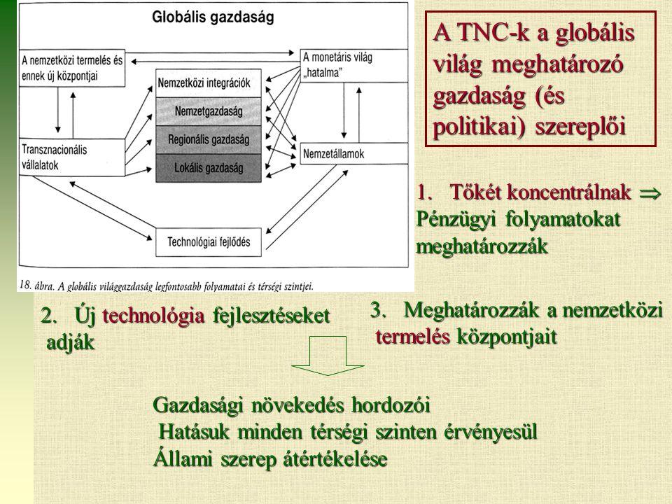 A TNC-k a globális világ meghatározó gazdaság (és politikai) szereplői