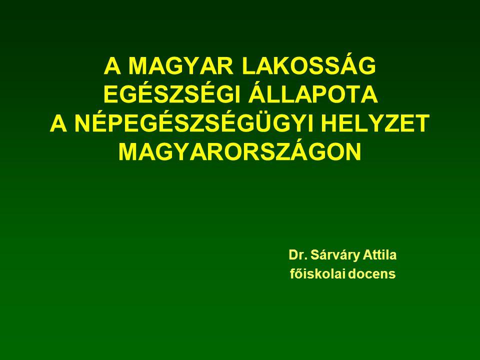 Dr. Sárváry Attila főiskolai docens