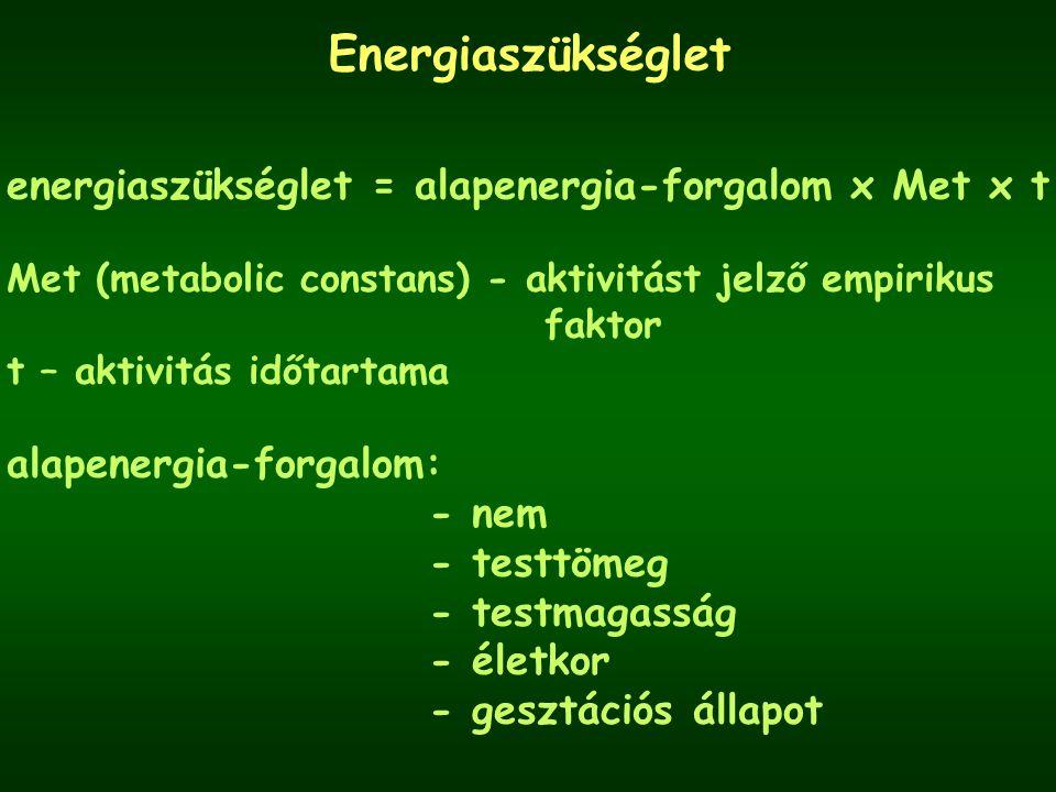 Energiaszükséglet energiaszükséglet = alapenergia-forgalom x Met x t