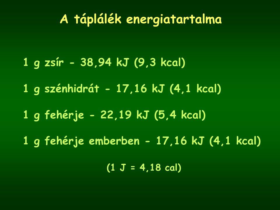 A táplálék energiatartalma