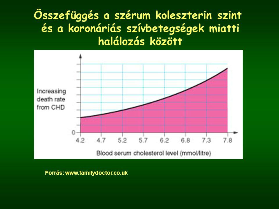 Összefüggés a szérum koleszterin szint