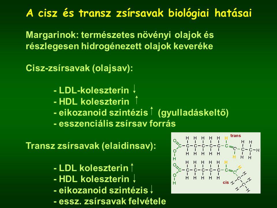 A cisz és transz zsírsavak biológiai hatásai