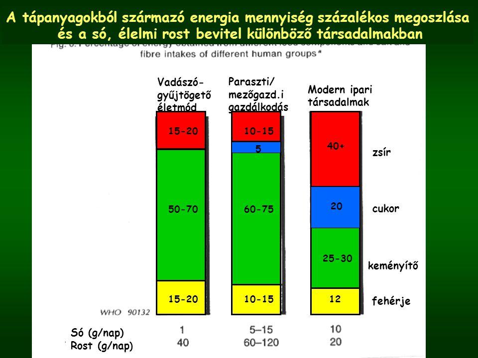 A tápanyagokból származó energia mennyiség százalékos megoszlása