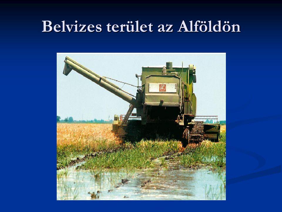 Belvizes terület az Alföldön