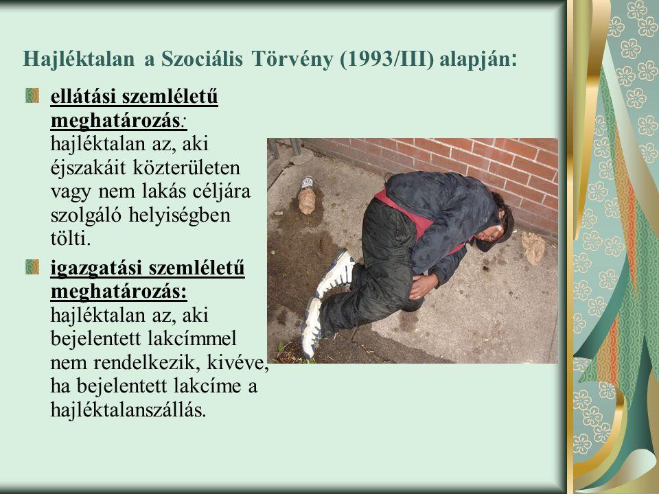 Hajléktalan a Szociális Törvény (1993/III) alapján: