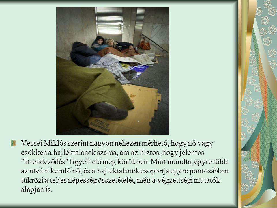 Vecsei Miklós szerint nagyon nehezen mérhető, hogy nő vagy csökken a hajléktalanok száma, ám az biztos, hogy jelentős átrendeződés figyelhető meg körükben.