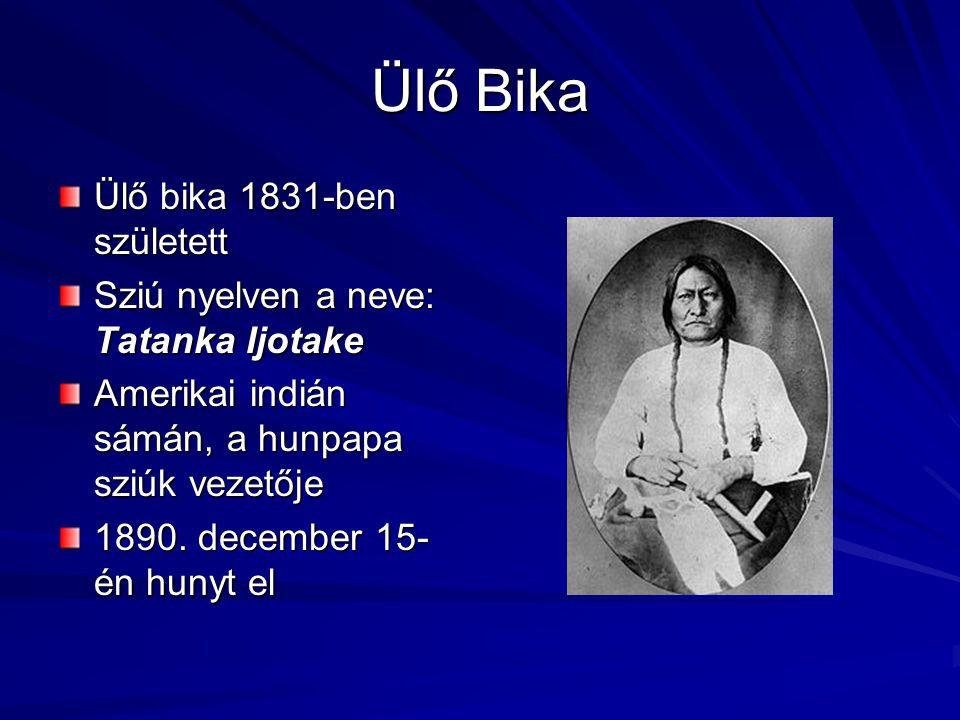 Ülő Bika Ülő bika 1831-ben született