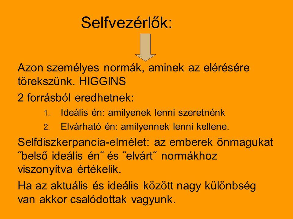 Selfvezérlők: Azon személyes normák, aminek az elérésére törekszünk. HIGGINS. 2 forrásból eredhetnek: